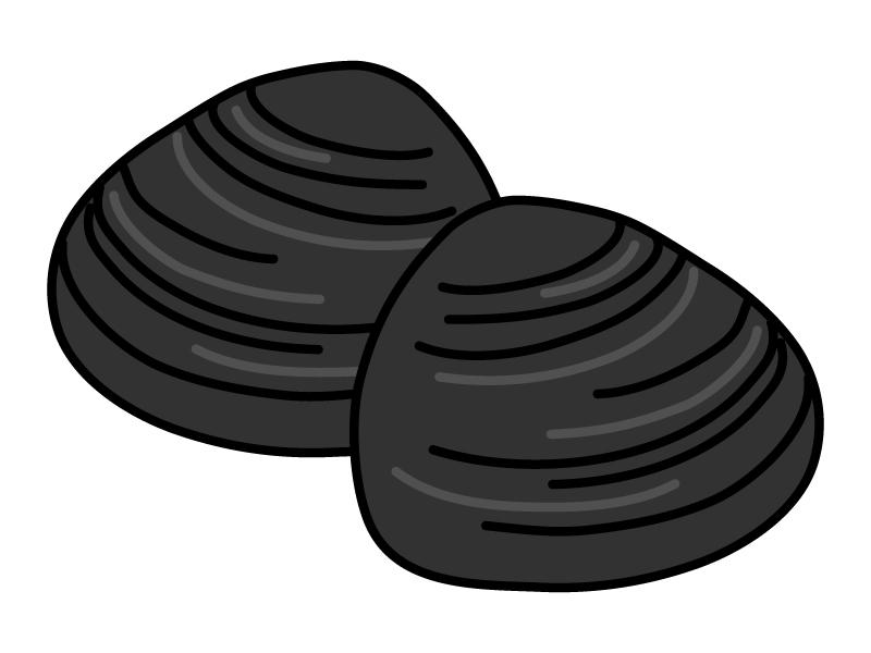シジミのイラスト