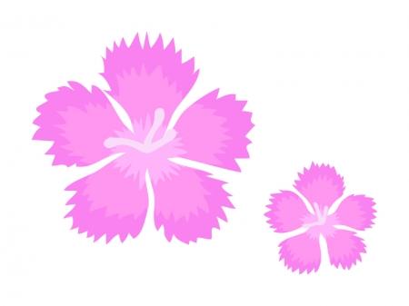 なでしこ(撫子)の花のイラスト
