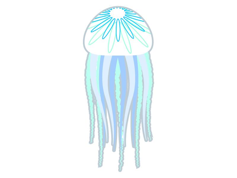 クラゲのイラスト02