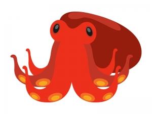 タコ(蛸)のイラスト03