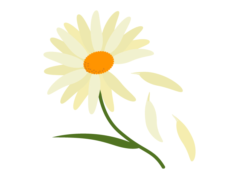 花占いのイラスト