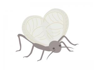 鈴虫のイラスト