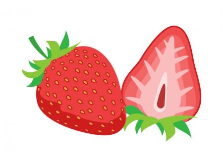 カットしたイチゴのイラスト
