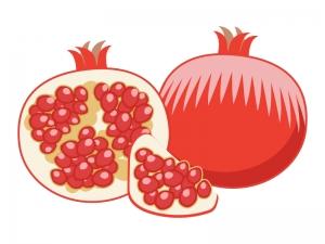 果物・ザクロのイラスト