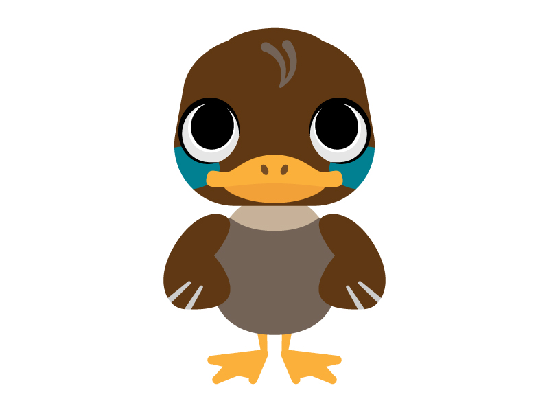 かわいいカモ(鴨)のイラスト