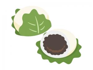 和菓子・柏餅のイラスト